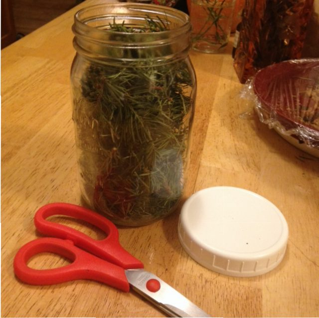 Douglas Fir Vinegar-The Messy, Kitchen Table Method